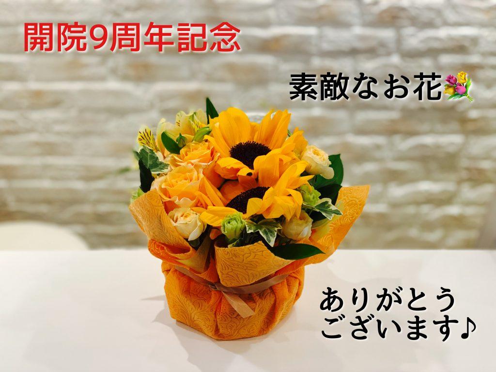 #0367  9周年記念キャンペーンで美肌治療【フォトナ4D】を体験ください